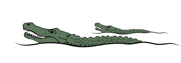 The Gators of Extreme Remodeling